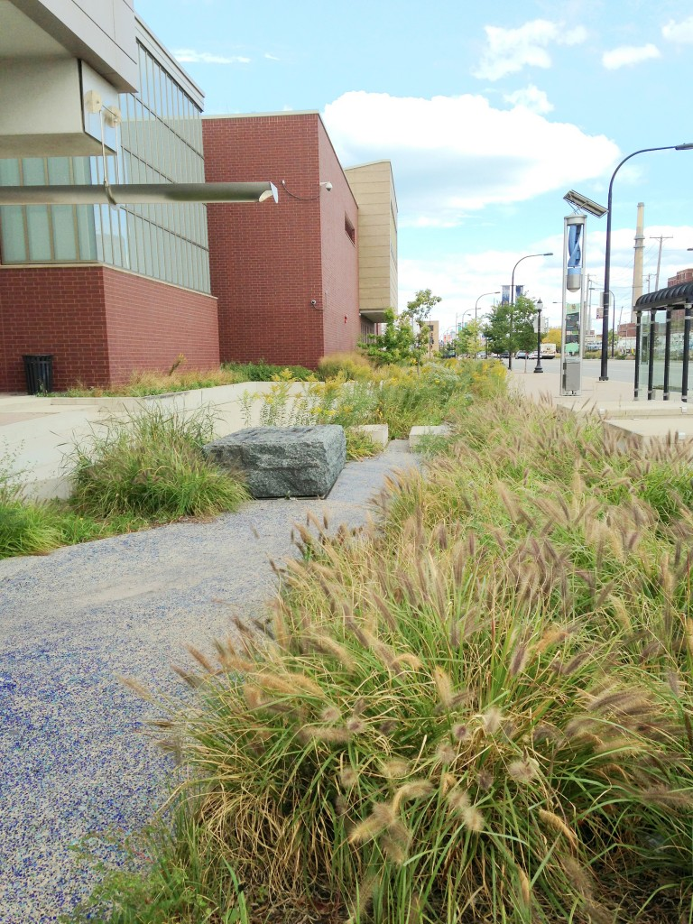 GSI part of a larger network of green stormwater infrastructure systems in Chicago, Ill., intended to capture runoff from small areas reducing overall discharge volume.